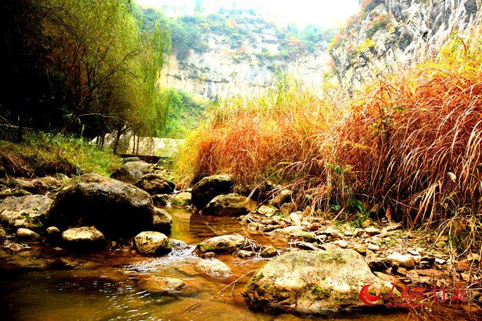 【陇南市州行】成县西狭颂风景区:品味文化的圣地