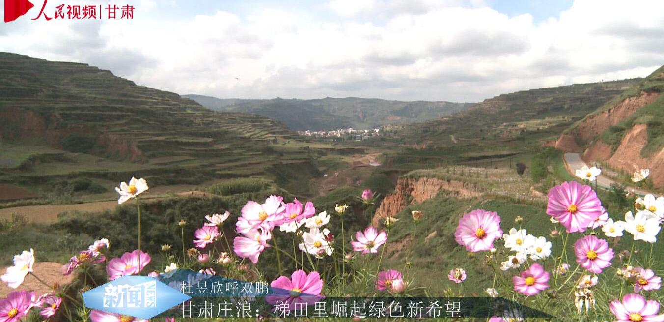 梯田里崛起绿色新希望        梯田,是甘肃省平凉市庄浪县的标志,一提起庄浪,人们就会想起梯田。