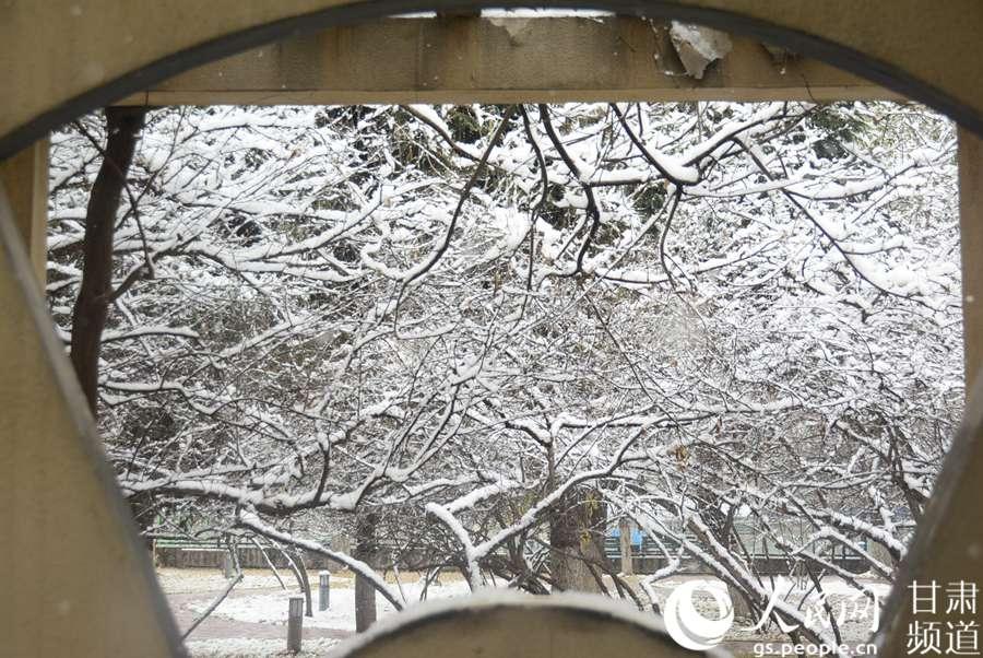 兰州迎降雪天气 银装素裹如诗如画