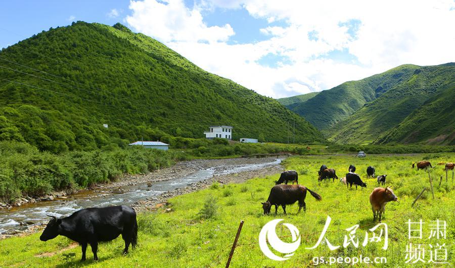 甘肃甘南州:全域旅游秀美家园旅行攻略怎么记图片