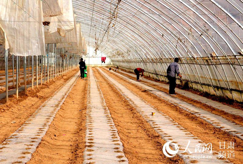 陇南市成县的春耕正在有序展开。(张茜 摄)